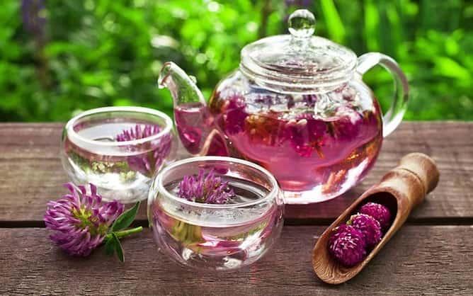 Soğuk algınlığına iyi gelen, bağışıklıklığı güçlendiren bitki çayları