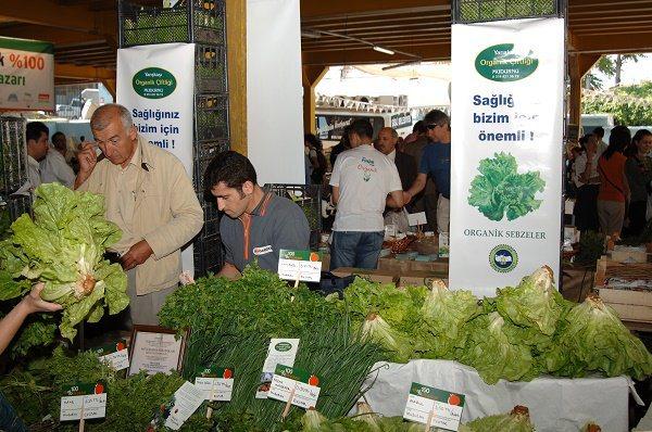 İstanbul'un organik pazarları